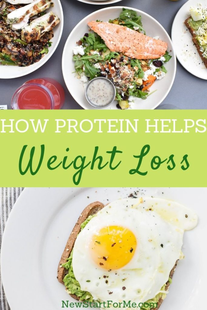 Once you learn the reasons protein is important for your weight management you become one step closer to fully understanding weight loss.