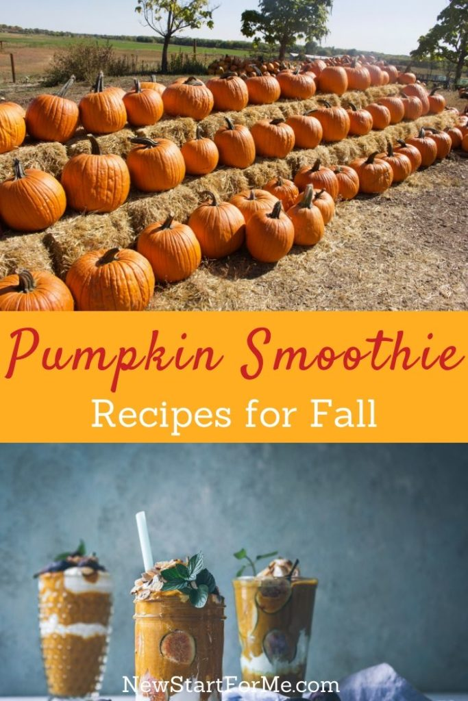 Pumpkin smoothie recipes will help you enjoy the fall season while also enjoying a healthy drink that is filled with flavor.