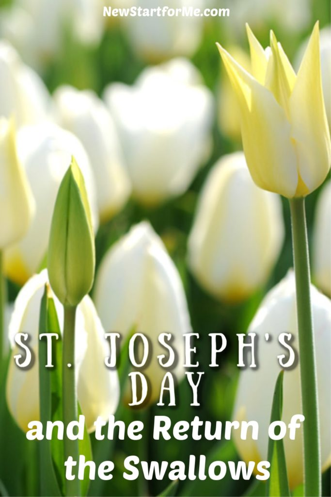 You are invited to discover one of the oldest traditions in San Juan Capistrano on St Josephs Day and the return of the swallows. Things to do in Orange County   Spring Events in Orange County   Mission San Juan Capistrano Events   San Juan Capistrano Events   Travel Tips   California Travel Ideas #travel #orangecounty