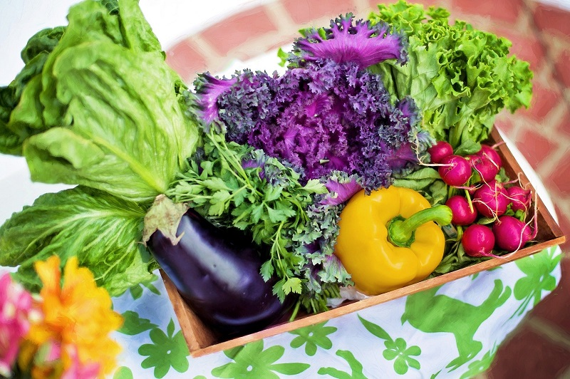 Easiest Diet Plan to Lose Weight a Basket Filled with Veggies