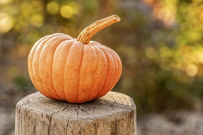 Pumpkin Spice Tea Recipes